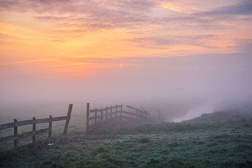 Wormer hek in ochtendnevel van Pieter Struiksma