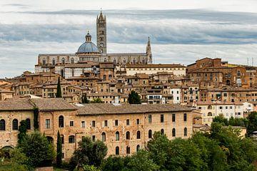 Dächer und Kathedrale von Siena, Toskana von Easycopters