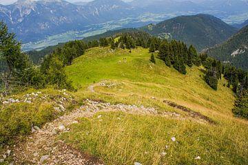 Oostenrijkse pad naar de top van Remco de Zwijger