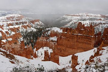 Eingeschneiter Bryce Canyon van Christiane Schulze