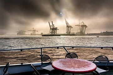 Boottocht op de Elbe in Hamburg van Annette Hanl
