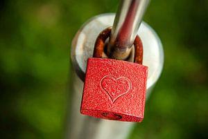 Het Kasteel van liefde