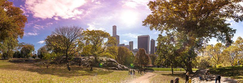 Central Park, New York - Panorama van Maarten Egas Reparaz
