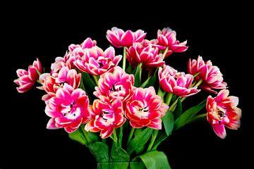 Bosje tulpen van Henk Langerak