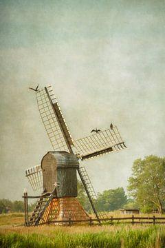 Friesische Mühle von Lars van de Goor