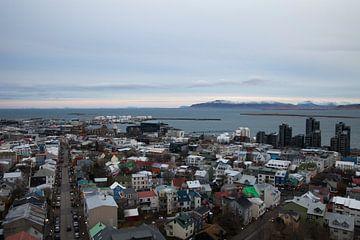 Reykjavik van Irene Hoekstra