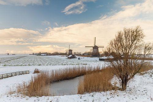 Nederlands winterbeeld van
