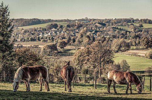 Panorama Epen in Zuid-Limburg retro stijl van John Kreukniet