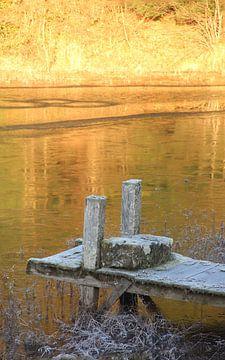 Goldene See von Wilma Overwijn