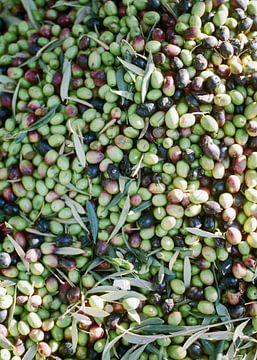 Oliven in Marrakesch von Raisa Zwart