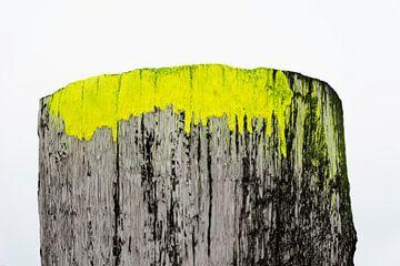 detail van een paalhoofd, zeeuwse kust von Jeannette Kliebisch