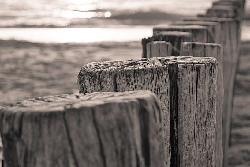 Typisch Zeeuwse Paalhoofden bij Zoutelande van Jonathan van den Broeke