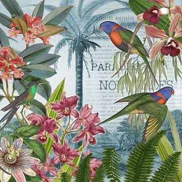 Verhalen uit het paradijs van christine b-b müller