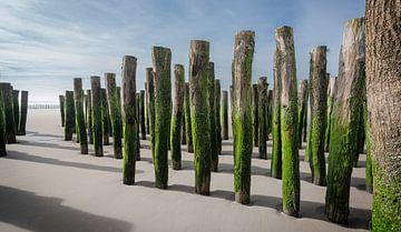 1056 Opal-Küste von Adrien Hendrickx