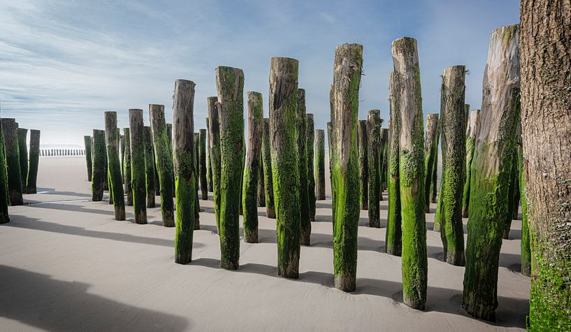 1056 Opal Coast van Adrien Hendrickx