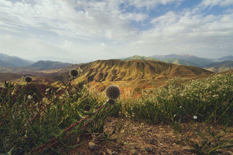 Summer in the mountains van Elena Jongman