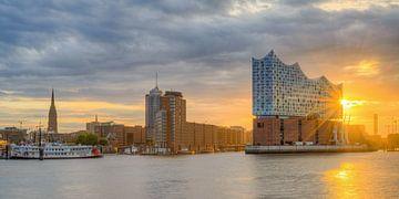 Elbphilharmonie in Hamburg van Michael Valjak