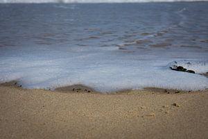 Schuimkop aan zee van