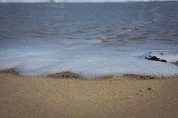 Schuimkop aan zee van Alexander van der Dussen