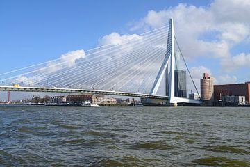 Erasmusbrug, Rotterdam von Peter Apers