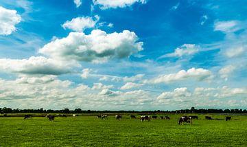 Landschap Groningen Westerkwartier van Marcel Braam