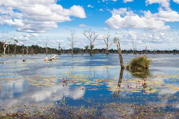 Jayatataka Baray Lake - Kambodscha Siem Reap von Anne Zwagers