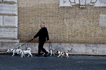 L'homme laisse sortir les chiens sur Marieke van der Hoek-Vijfvinkel