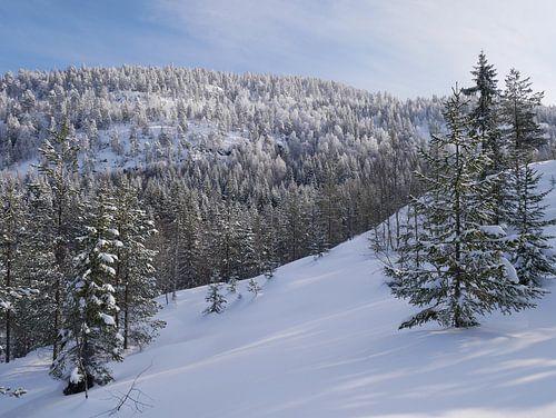 Noorse winterlandschap