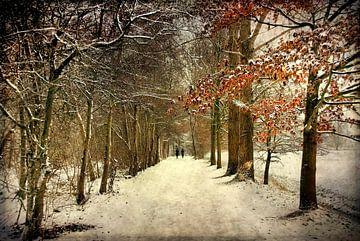 Winterlandschap van Annie Snel