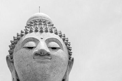 De grote Buddha van Robin Evers