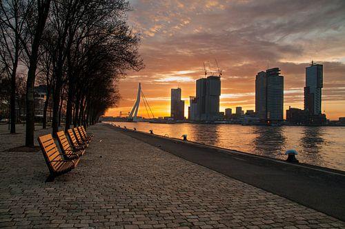 Rotterdam met zonsopkomst van