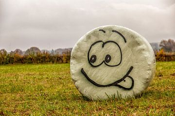 Plastic hooibaal met Smiley van
