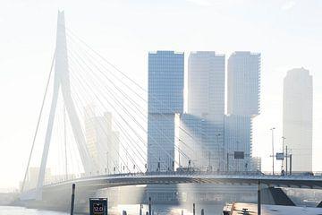 ochtendzon door de wolkenkrabbers van de Kop van Zuid in Rotterdam van Rick Keus