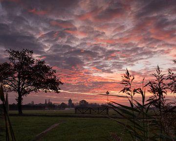Sonnenaufgang über dem Polder von Daniel Van der Brug