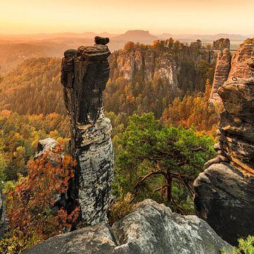 Wehlnadel bei Sonnenaufgang, Bastei, Elbsandsteingebirge, Sachsen, Deutschland von Markus Lange