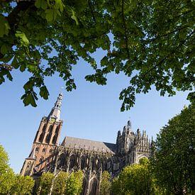 Sint Janskathedraal 's-Hertogenbosch van Merijn Geurts