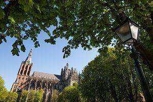 St. Johannes-Kathedrale 's-Hertogenbosch von Merijn Geurts