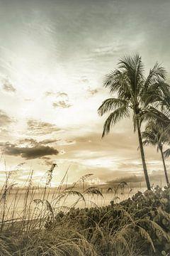 BONITA BEACH Droomachtige zonsondergang | Vintage van Melanie Viola