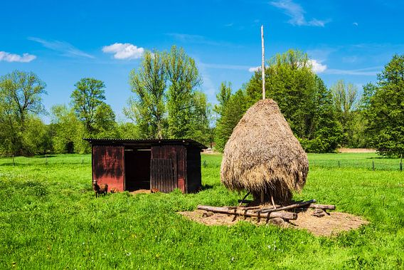 Hay stack in the Spreewald area near Luebbenau, Germany