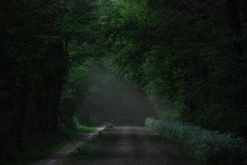 Darkgreen van