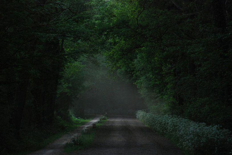 Darkgreen van Jenny de Groot
