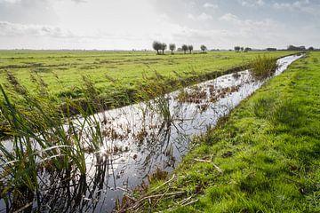 Weiland met sloot nabij Gouda in Nederland van Joost Adriaanse