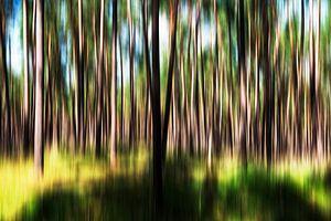 Bewogen bos van Maerten Prins