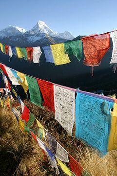 Gebedsvlaggen in het Himalaya gebergte van Melissa Peltenburg