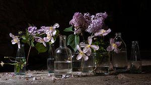 Stillife Dark | clematis & lilac van Studio Petra Moes