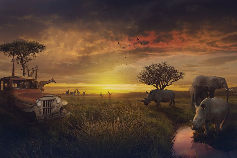 De schoonheid van Afrika van Bert Hooijer