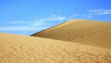 Dünen von Gran Canaria Playa del Ingles von