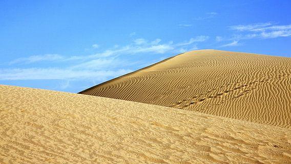 Dünen von Gran Canaria Playa del Ingles van Renate Knapp