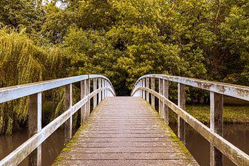 De brug van Stephan Krabbendam