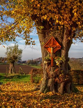 Herfst in Zuid-Limburg